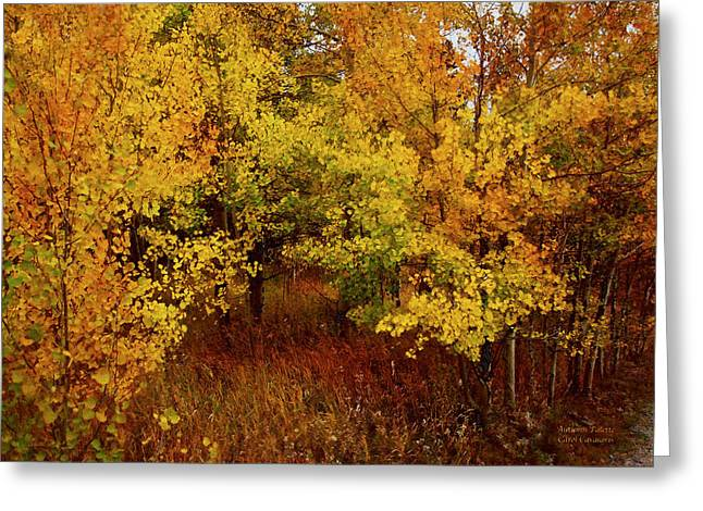 Autumn Palette Greeting Card by Carol Cavalaris