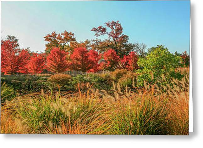 Autumn Panorama  Greeting Card by Garry McMichael