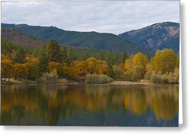 Autumn Panorama Greeting Card by Loree Johnson