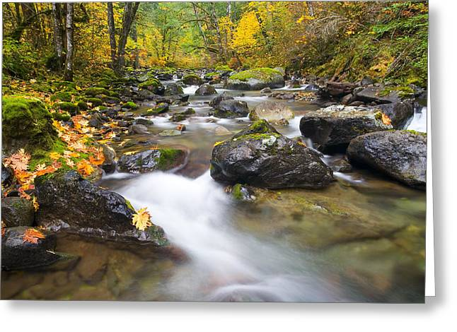 Stream Greeting Cards - Autumn Passing Greeting Card by Mike  Dawson