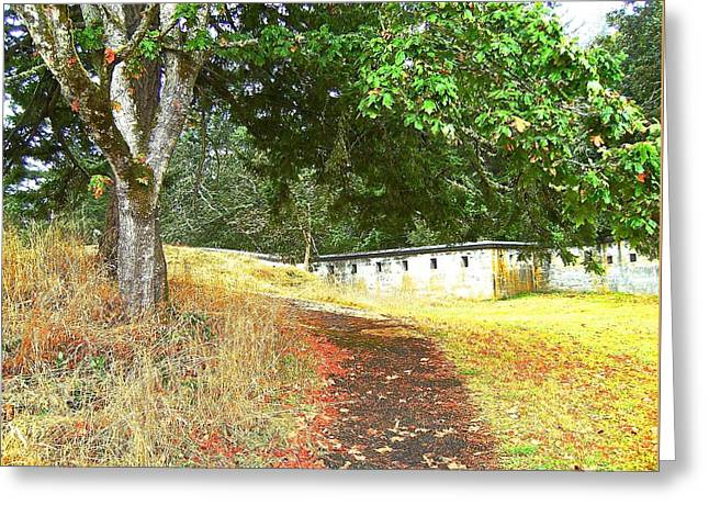 Fall Grass Greeting Cards - Autumn Path Greeting Card by Katy Granger
