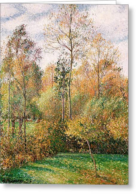 Autumn Poplars, Eragny Greeting Card by Camille Pissarro