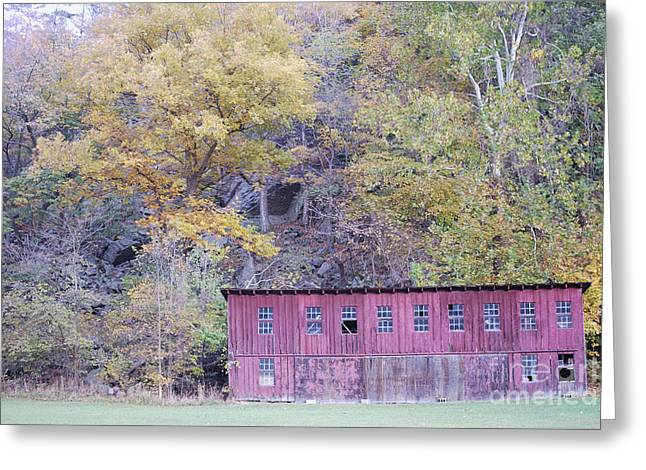 North Fork Greeting Cards - Autumn Poultry Barn Greeting Card by Randy Bodkins