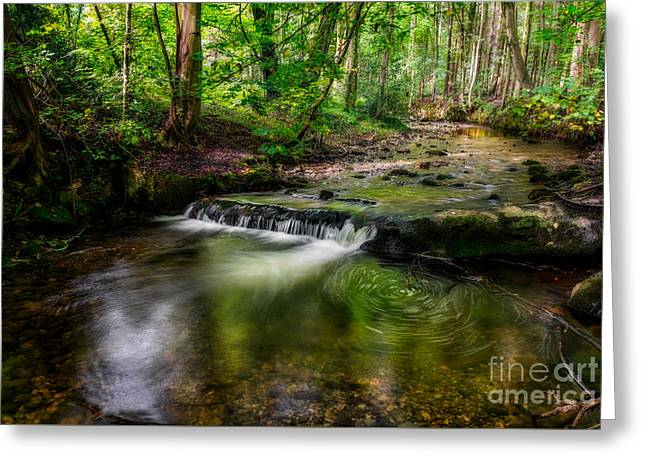 Autumn Rapids Greeting Card by Adrian Evans