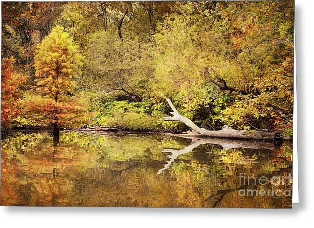 Recently Sold -  - Fishing Creek Greeting Cards - Autumn Reflection Greeting Card by Cheryl Davis