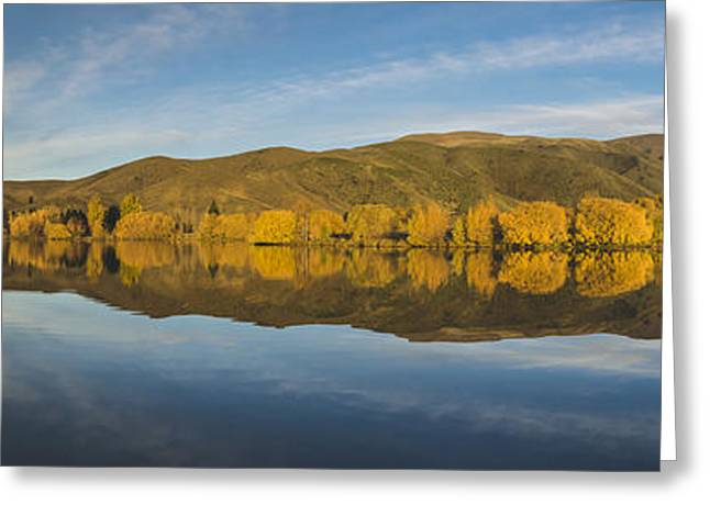 Willow Lake Greeting Cards - Autumn Reflections Wairepo Arm Greeting Card by Robert Green