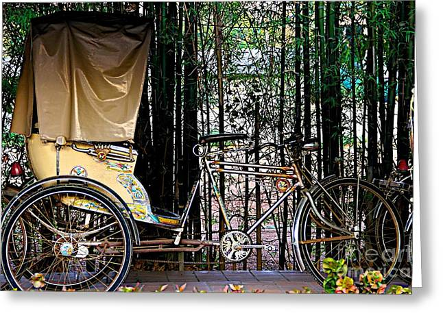 Polish Culture Greeting Cards - Autumn Rickshaw Greeting Card by Gail Palethorpe