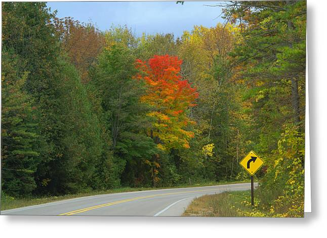 Square Format Greeting Cards - Autumn Round the Bend Greeting Card by Ann Horn