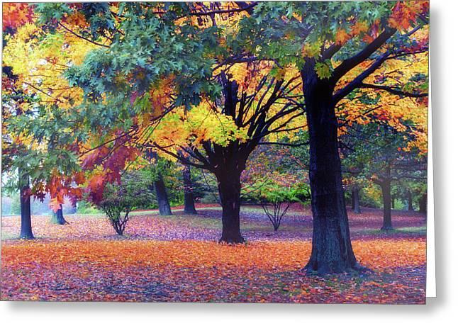 Autumn Symphony Greeting Card by Jessica Jenney