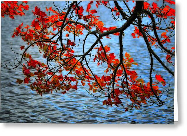 Colors Of Fall Greeting Cards - Autumn scene - Little Pond  New Hampshire Greeting Card by Thomas Schoeller