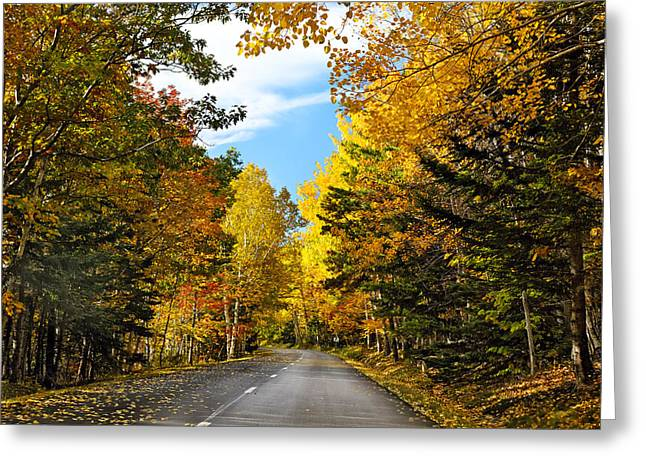 Scenic Drive Greeting Cards - Autumn Scenic Drive Greeting Card by George Oze