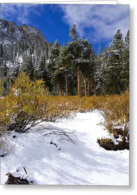 Autumn Snow Greeting Card by Chris Brannen