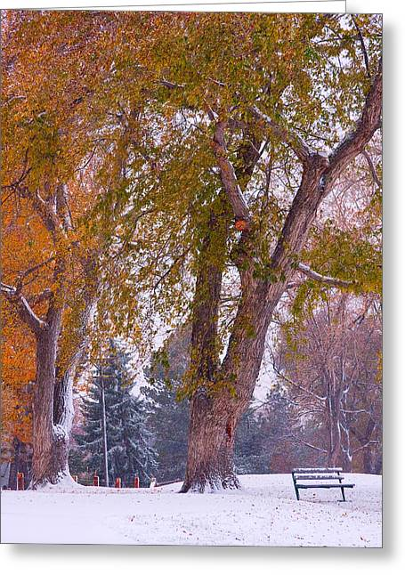 Lightning Gifts Greeting Cards - Autumn Snow Park Bench   Greeting Card by James BO  Insogna