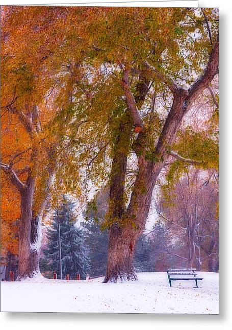 Lightning Gifts Greeting Cards - Autumn Snow Park Bench Peace Greeting Card by James BO  Insogna