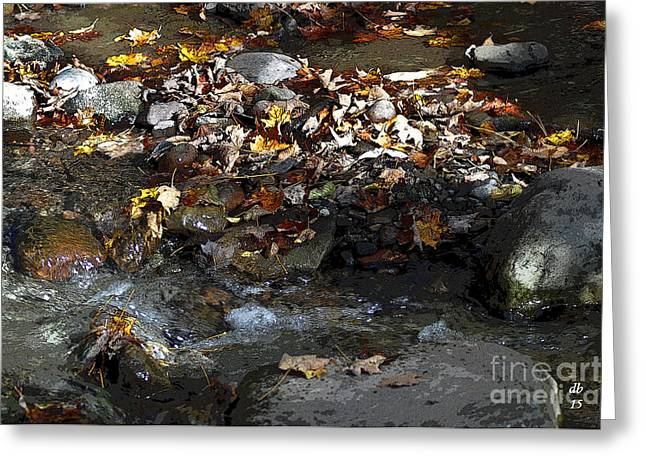 Rocks Greeting Cards - Autumn Soup Greeting Card by Diane E Berry