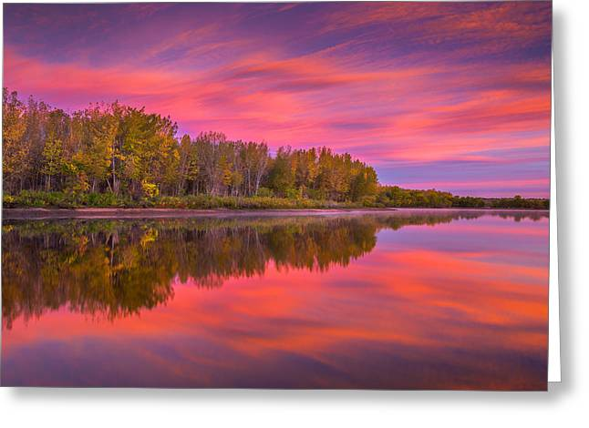 Autumn Splendor Greeting Card by Darren White