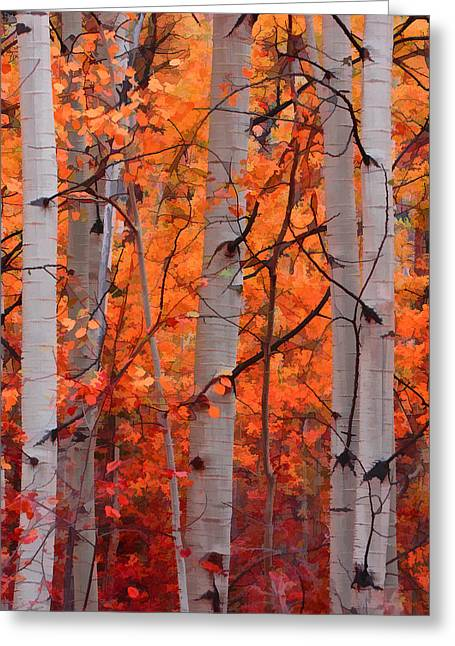 Leaf Peepers Greeting Cards - Autumn Splendor Greeting Card by Don Schwartz