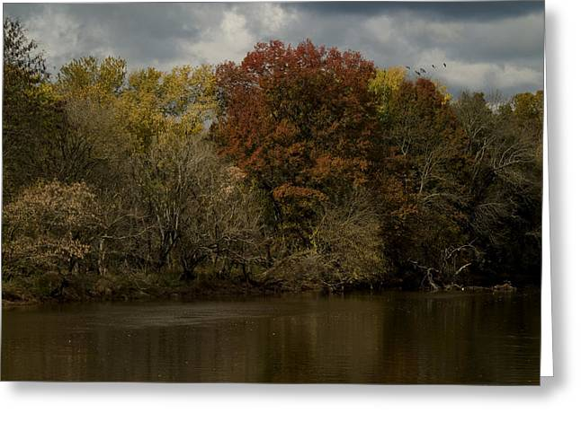 Duke Island Park Greeting Cards - Autumn Storm Greeting Card by Warren M Gray