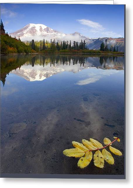 Rainy Greeting Cards - Autumn Suspended Greeting Card by Mike  Dawson