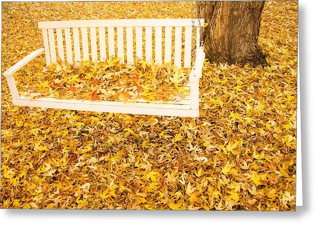 Lightning Gifts Greeting Cards - Autumn Swing Greeting Card by James BO  Insogna