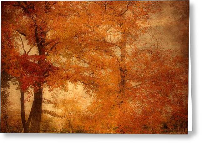 Autumn Tapestry - Lake Carasaljo Greeting Card by Angie Tirado