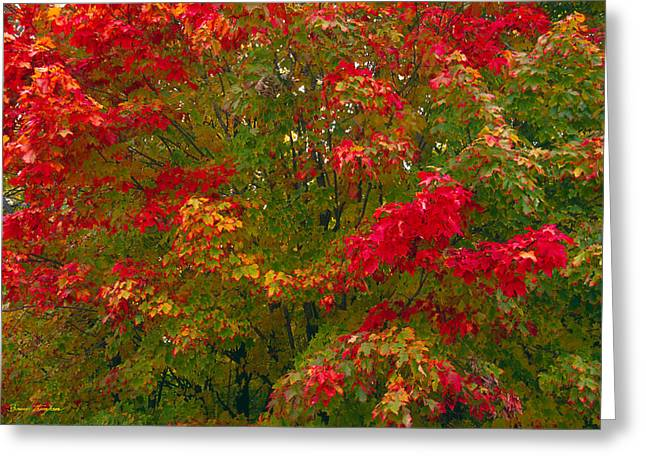 Autumn Tapestry Greeting Card by Bruce Thompson