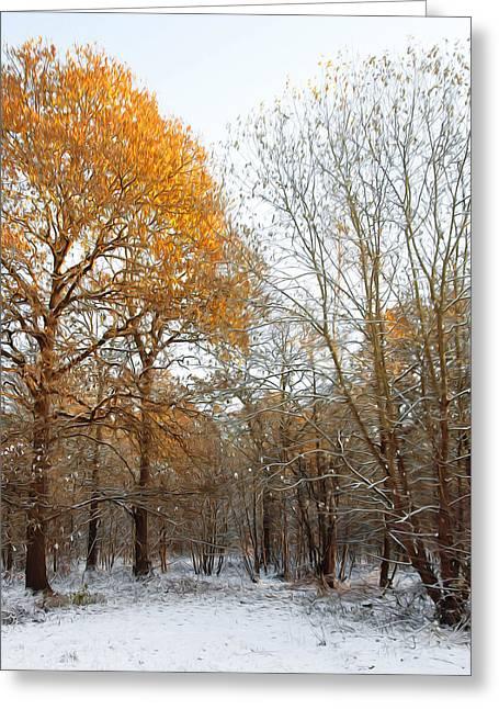Seaside Digital Art Greeting Cards - Autumn Tree Greeting Card by Svetlana Sewell