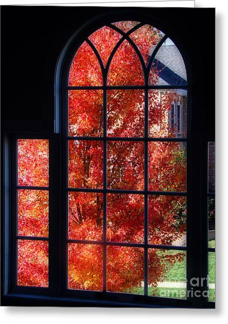 Autumn View Thru A Picture Window Greeting Card by Sue Melvin