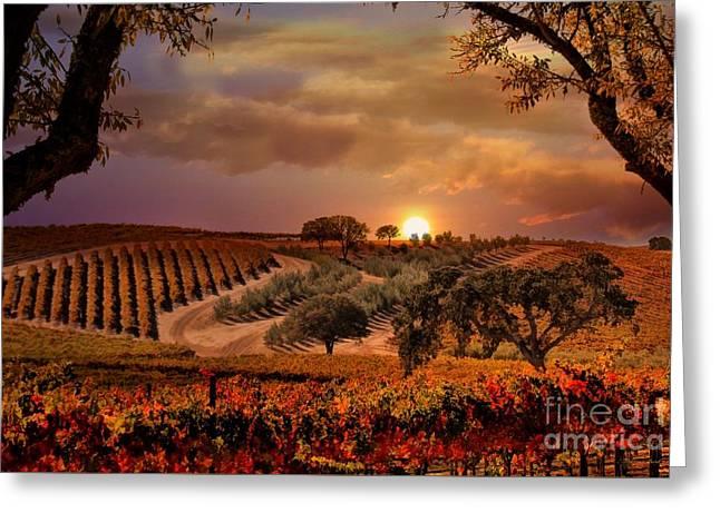 Autumn Vineyard Greeting Card by Stephanie Laird