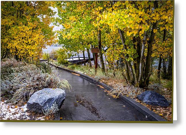 Rocks Greeting Cards - Autumn Walkway Greeting Card by Cat Connor