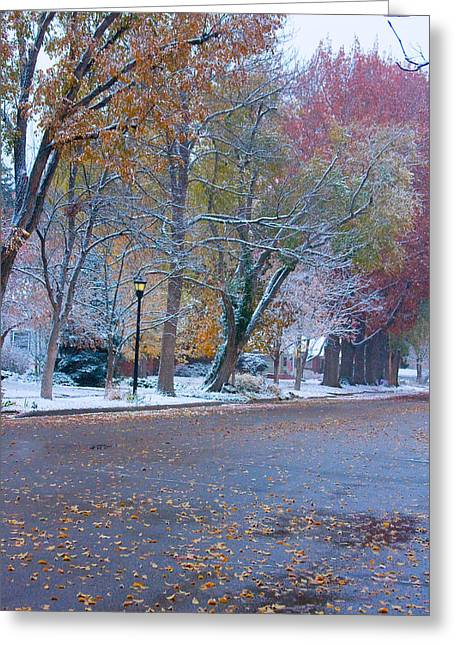 Lightning Gifts Greeting Cards - Autumn Winter Street Light Color Greeting Card by James BO  Insogna