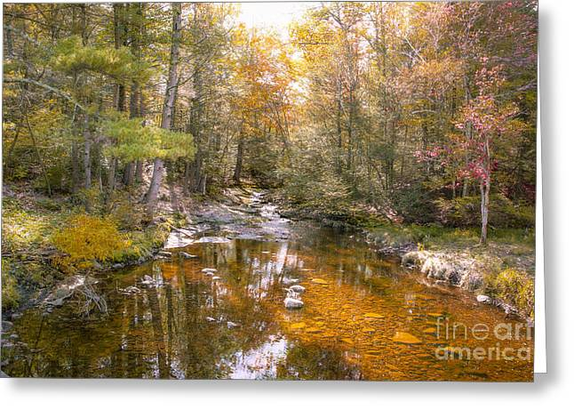 Autumn's Blessings Greeting Card by A New Focus Photography