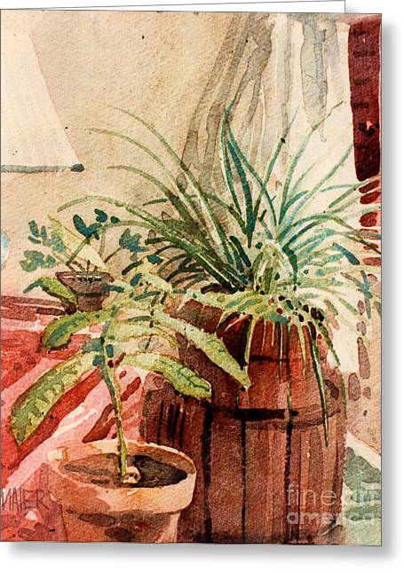 Potted Plants Greeting Cards - Avacado and Spider Plant Greeting Card by Donald Maier