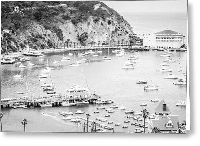 Theater Greeting Cards - Avalon California Panoramic Picture of Catalina Island Greeting Card by Paul Velgos