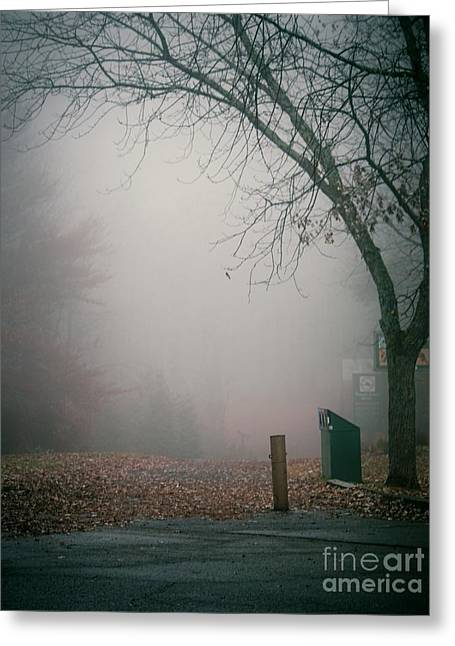 Fog Mist Greeting Cards - Avant les Flocons 02 - 2c7p2b Greeting Card by Variance Collections