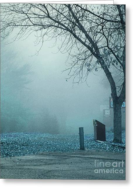 Fog Mist Greeting Cards - Avant les Flocons 02 - c5d Greeting Card by Variance Collections