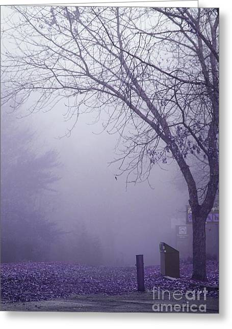 Fog Mist Greeting Cards - Avant les Flocons - 1c2b Greeting Card by Variance Collections