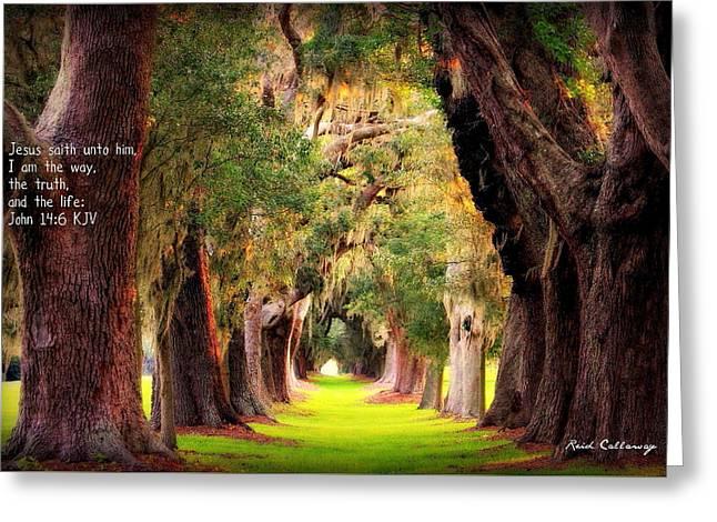 Avenue Of Oaks 2 I Am The Way Greeting Card by Reid Callaway
