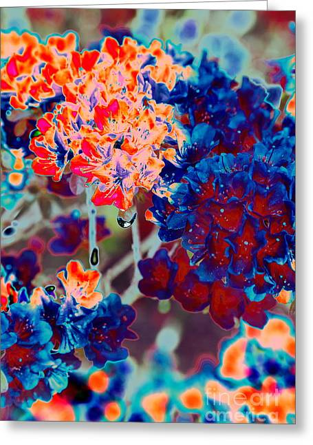 Abstract Rain Greeting Cards - Awakening Greeting Card by PlusO FineArt
