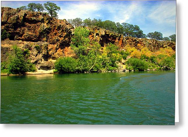 Artist Photographs Greeting Cards - Awe Inspiring Beauty Of The Sacramento River Greeting Card by Joyce Dickens