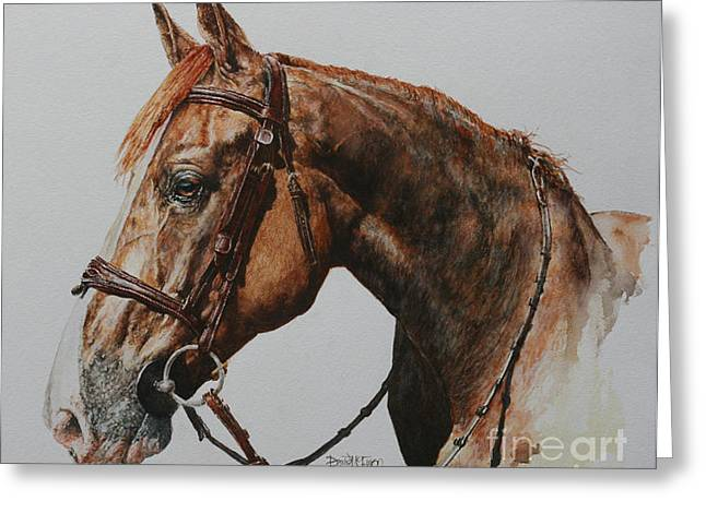 Showjumping Greeting Cards - Axel Greeting Card by David McEwen