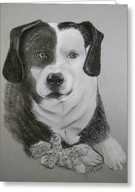 Mixed Labrador Retriever Pastels Greeting Cards - Axle and his toy Greeting Card by Joan Mansson