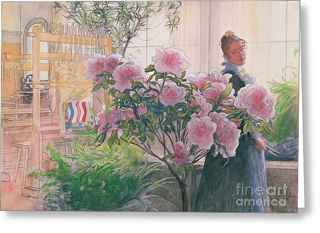 Pretty Woman Greeting Cards - Azalea Greeting Card by Carl Larsson