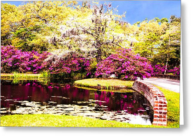 Canon 40d Greeting Cards - Azaleas and Dogwood Greeting Card by Terry Shoemaker