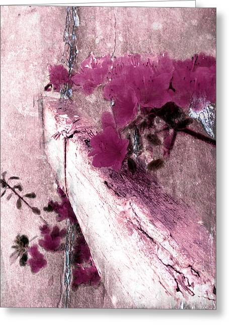 Flower Blossom Greeting Cards - Azaleas on Old Wood Greeting Card by Rachel Thompson