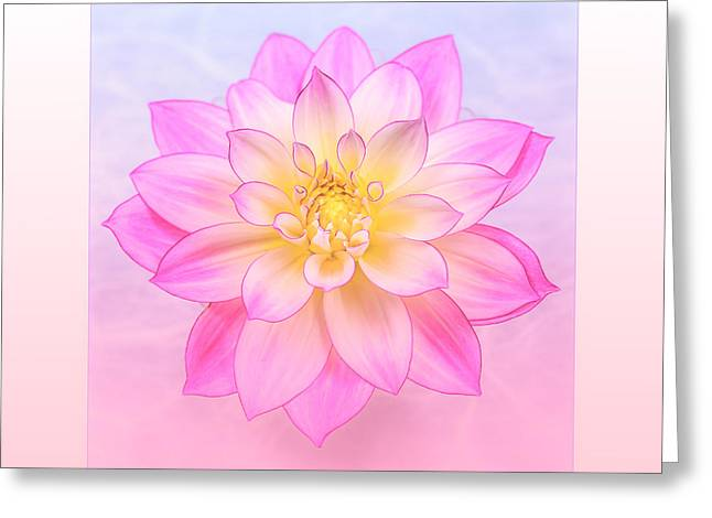 Coloured Greeting Cards - Aztec Dahlias Dahlien Solo Greeting Card by Mona Stut