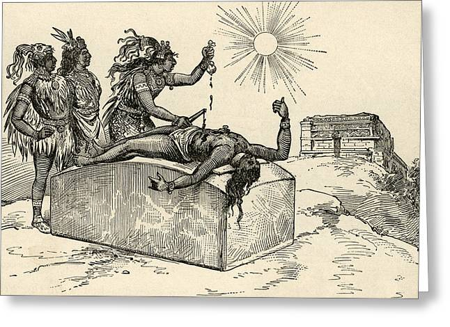 Aztec Priest Performing Sacrifice Greeting Card by American School