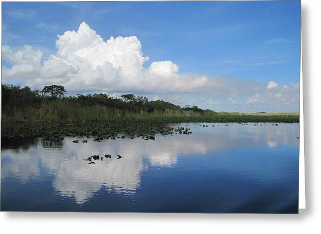 Saw Greeting Cards - Azul Reflexion Greeting Card by Margaret  Marzullo