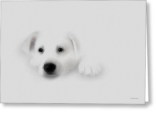 Baby Baron Greeting Card by Ron Jones
