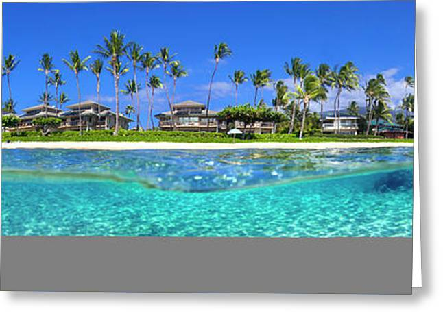 Baby Beach Above And Below Greeting Card by Sean Davey